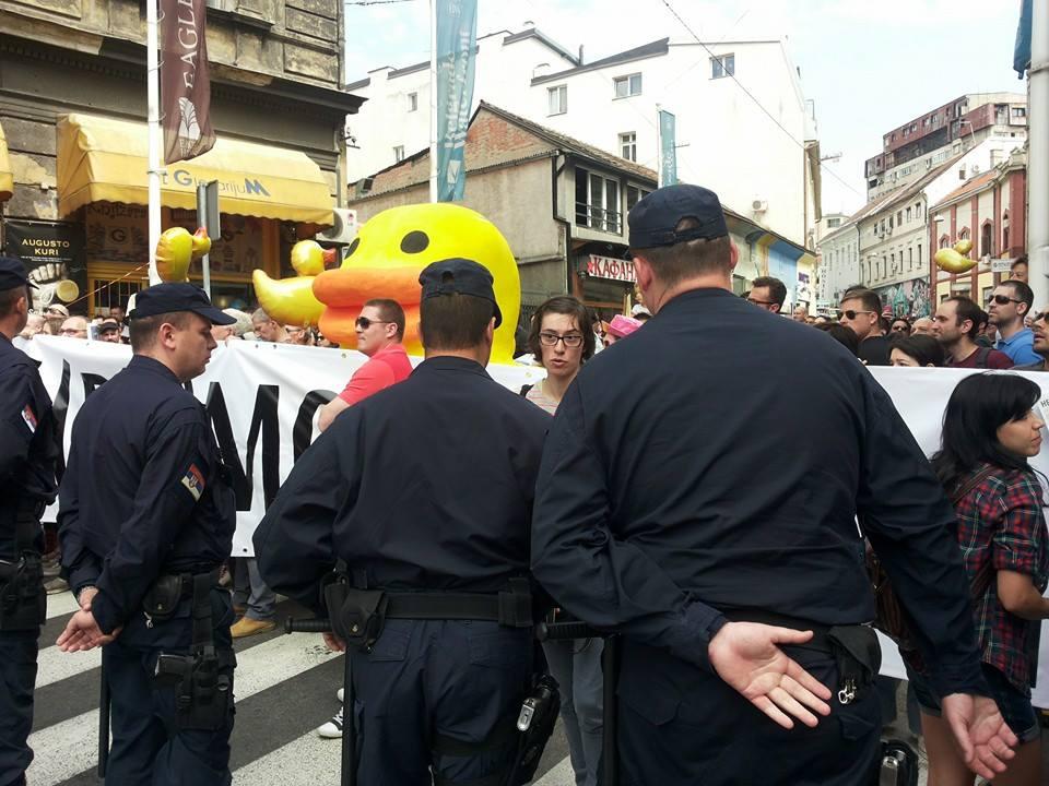 policajci videli patku