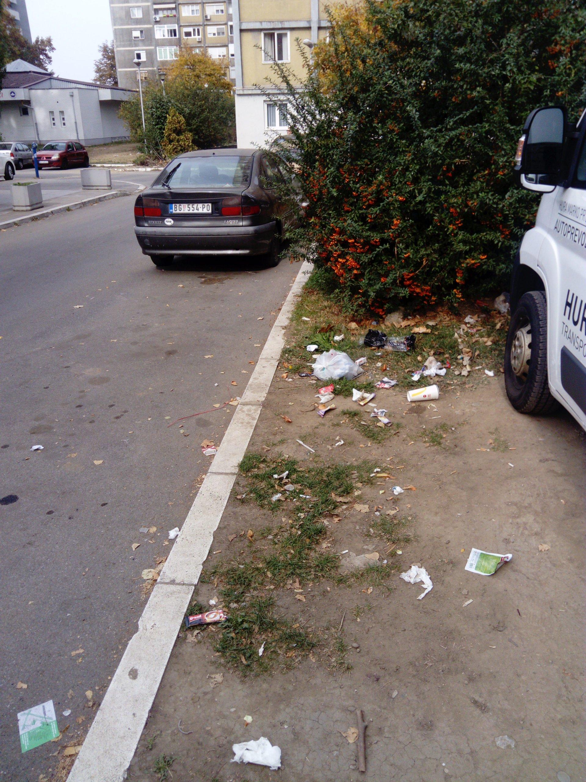 Maksi diskont ulica iza Bulevara Mihajla Pupina (Paviljoni)(2)