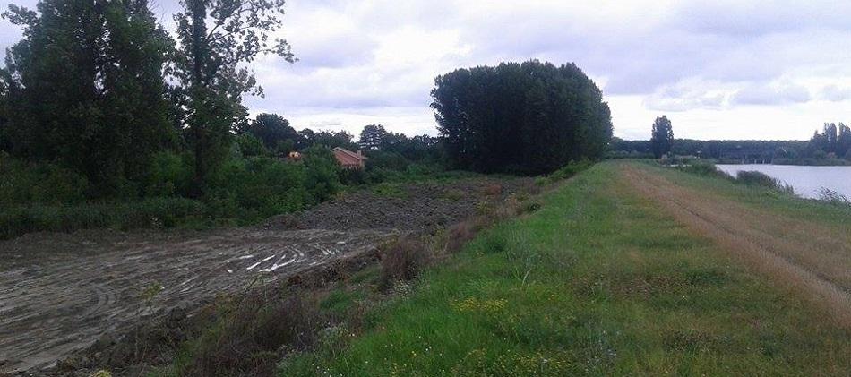 Veliki bački kanal - mulj