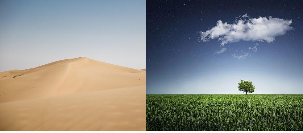 Vojvodina-Arapski emirati